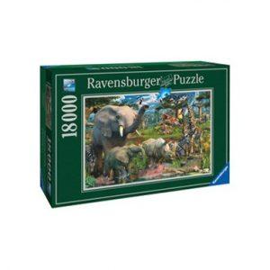 puzzel winkel wildlife