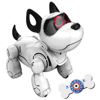 train mijn Pupbo Elektronische