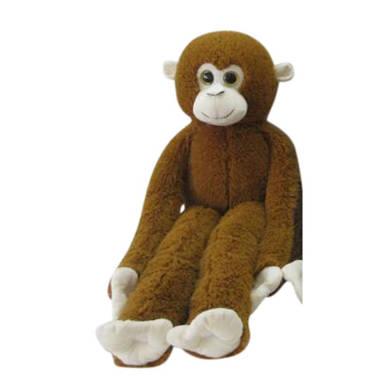 met lange armen en aap